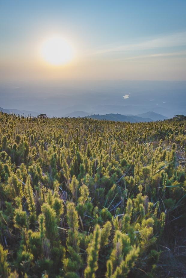 Vista do Pico Itapiroca.