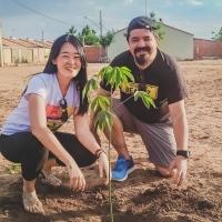 Arborizando